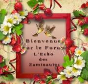 Kurohana vous souhaite le bonjour... 4010715755